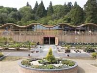 Batsford Arboretum & Garden Centre- Cotswolds