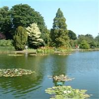 Breezy Knees Gardens & Burnby Hall Gardens