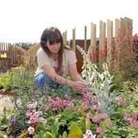 Harrogate Spring Flower Show 2015